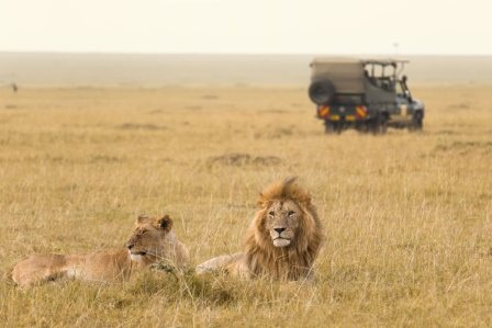Best honeymoon destination Kenya