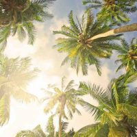 Les 12 meilleurs écrans solaires petits formats pour les familles