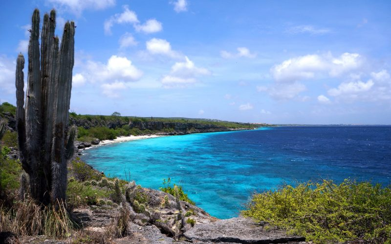Bonaire, among the best Caribbean Islands