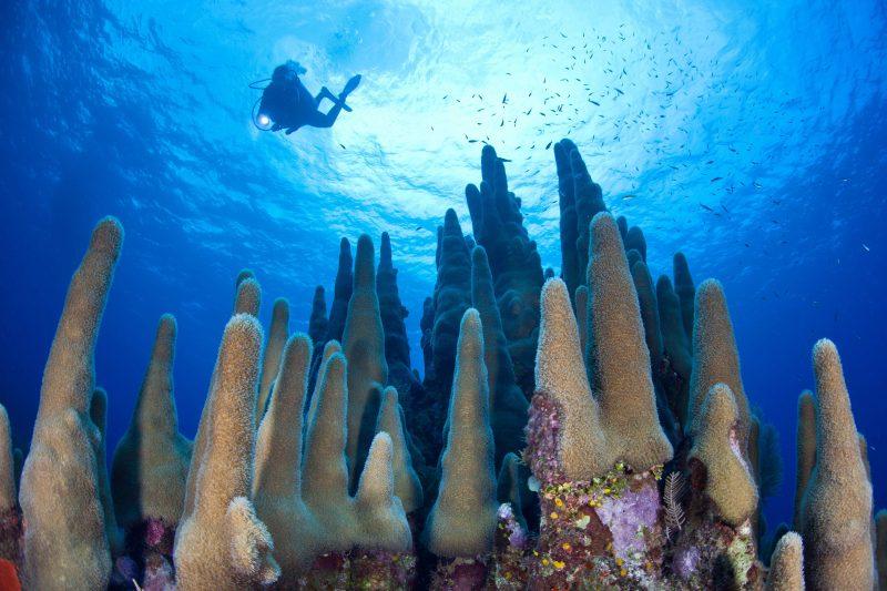Grand Cayman, among the best Caribbean Islands