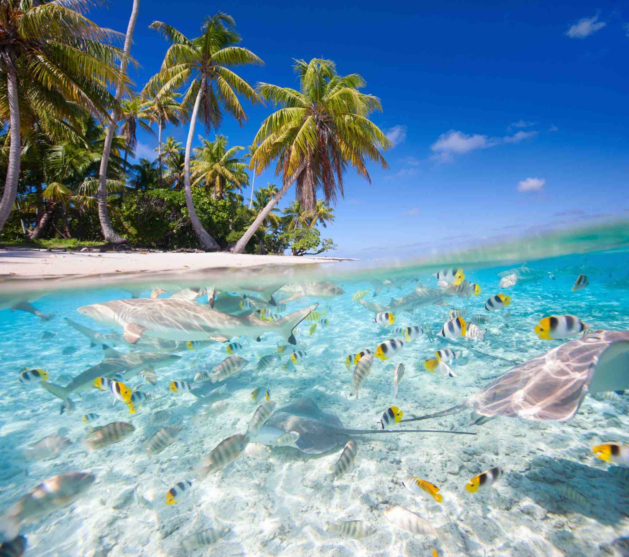 7 Most Amazing Secluded Islands Easy Planet Travel