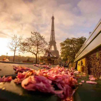 12 | France