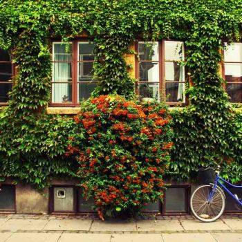 57 | Copenhagen, Denmark