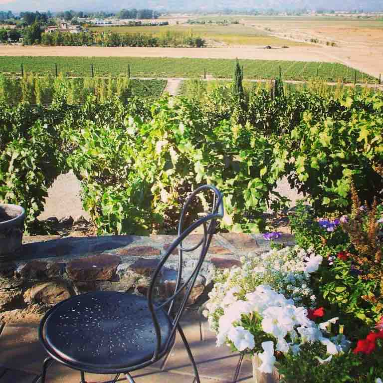 Best wineries | Sonoma Valley – Viansa