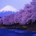 Hike Japan's highest peak, Mt Fuji