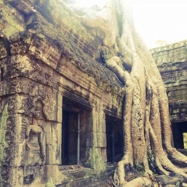 Ta Phrom Siem Reap Cambodia