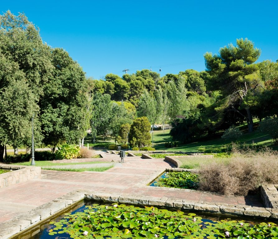The Best things to do in Barcelona: Montjuïc Park
