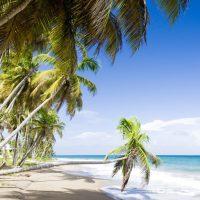 Discover Zika Free Caribbean Islands