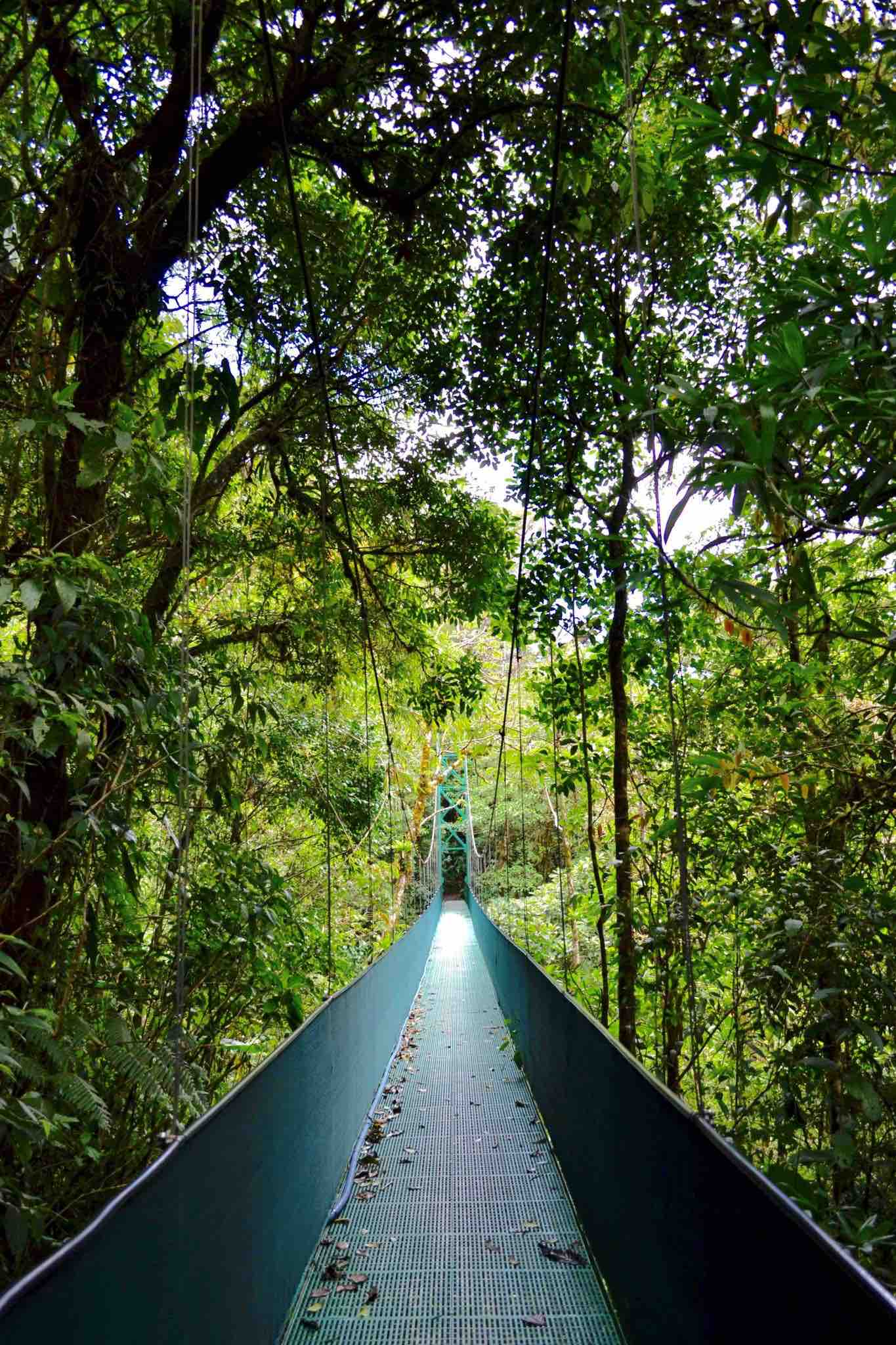 the 3 best parks to hike with kids in Costa Rica