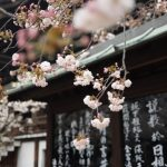 Safest cities to visit in 2018: Osaka, Japan