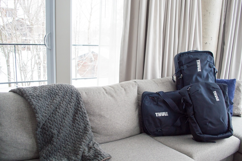 Best travel luggage: Thule Subterra