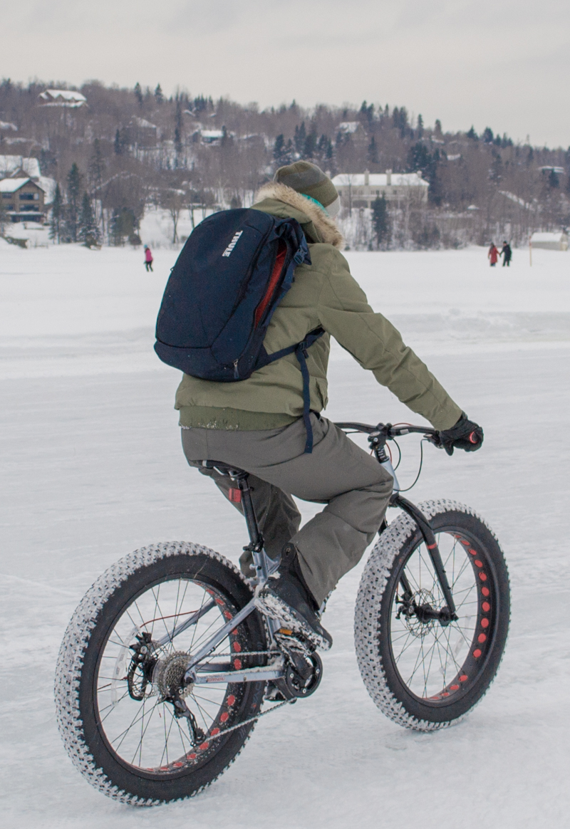 Best travel backpack: Thule Subterra