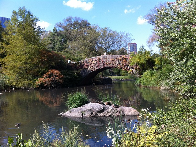 The best family-friendly spots in New York City: Central Park