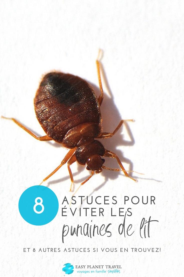 8 Astuces Pour Éviter Les Punaises De Lit