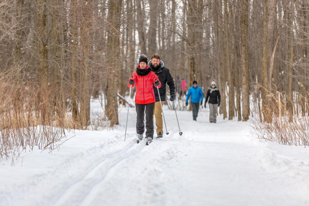 ski de fond à Montréal