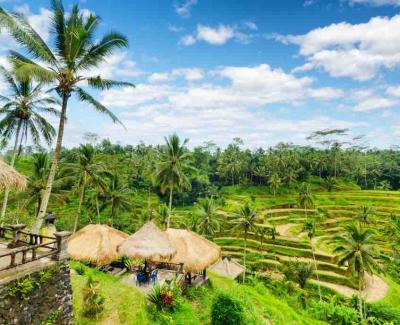 7 | Bali, Indonesia