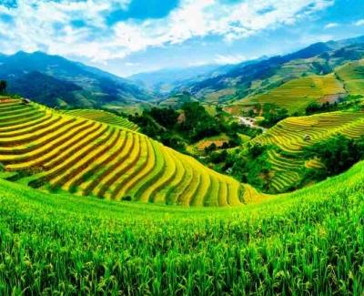 RTW On a Dime Vietnam