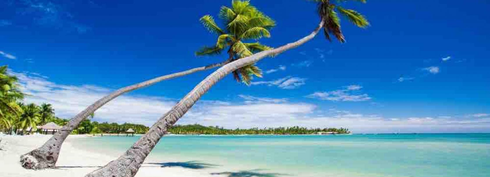 Fiji 1